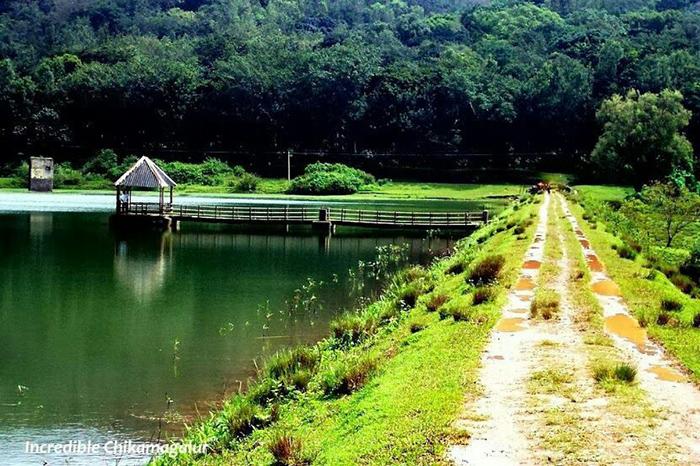 جنگل کرابی تایلند
