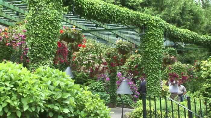 پارک گلخانه استانبول istanbul Park Greenhouse