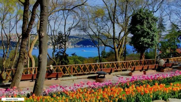 پارک امیرگان استانبول Park Emirgan Istanbul