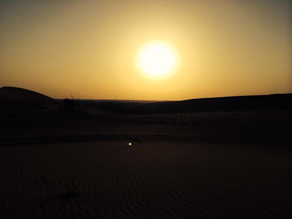 تور سافاري دبي