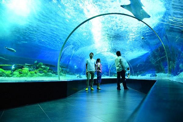 پارک اقیانوس مانیل