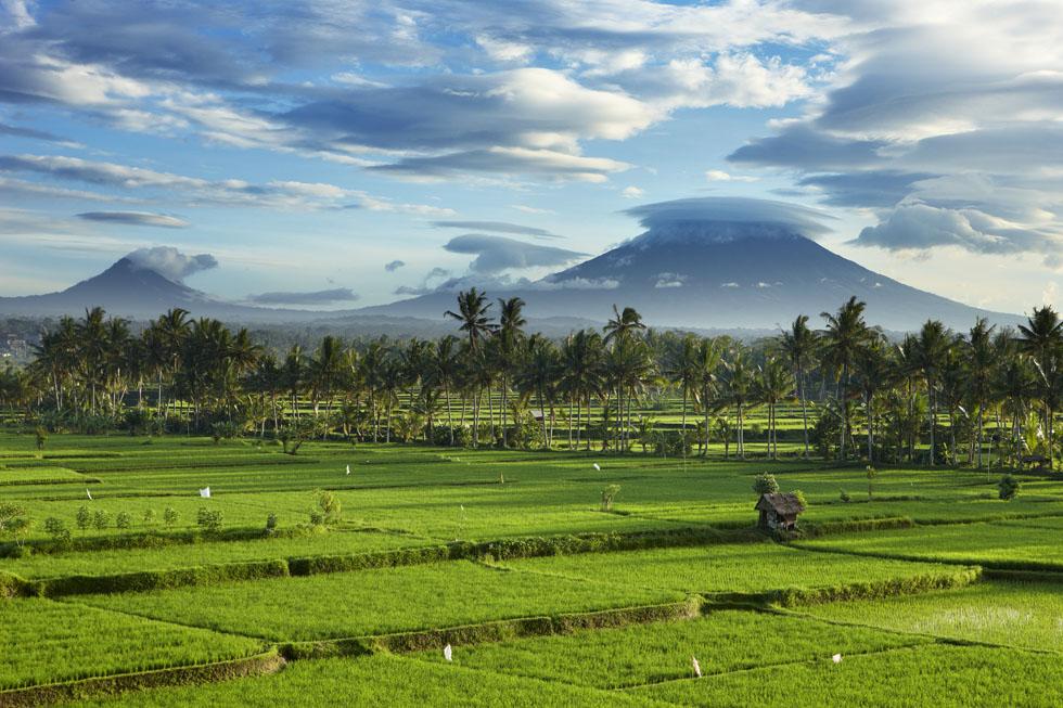 بهتری زمان سفر به بالی