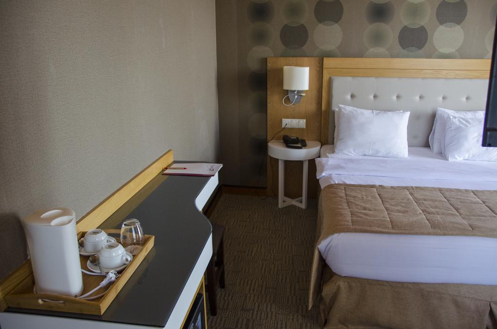 اتاق های هتل اسپاتنیک باتومی