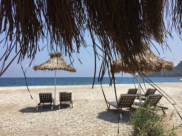 شنا در تور ترکیه