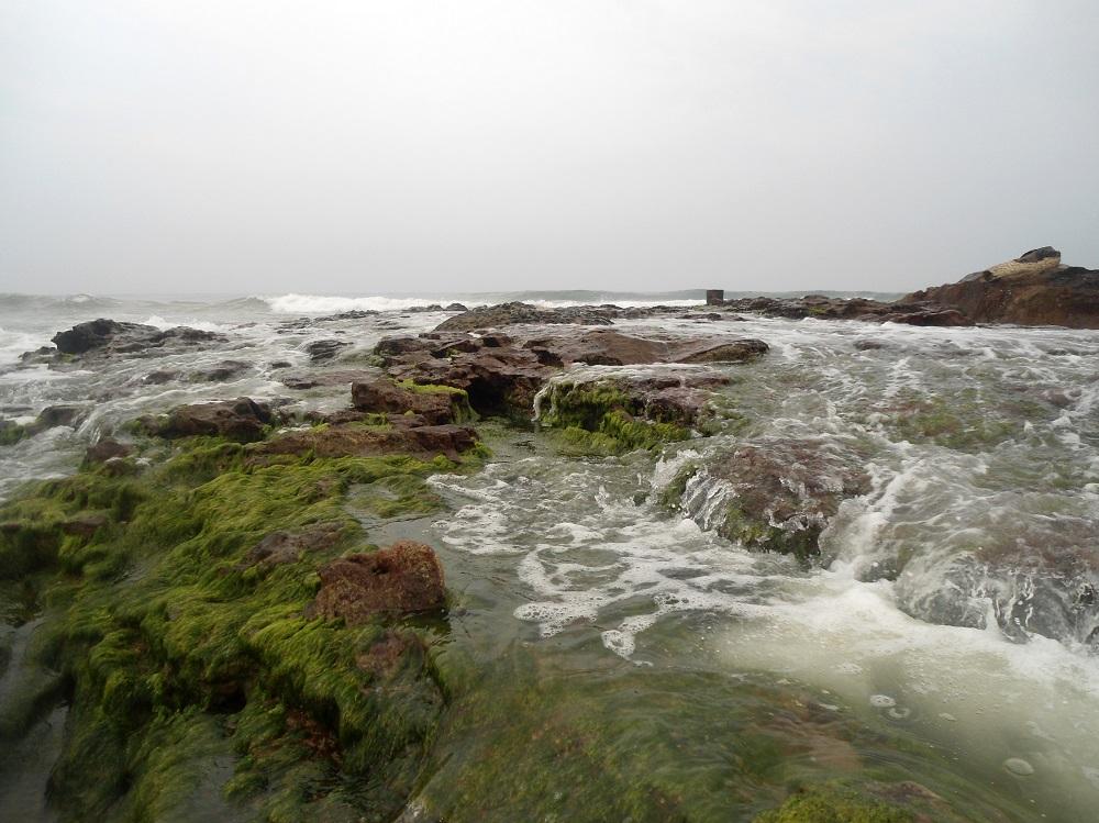 ساحل بهیمونی پینام در آندرا پرادش هند