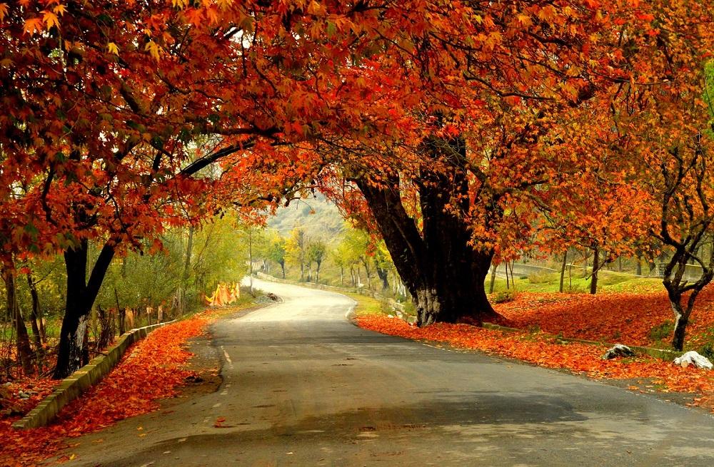 هند در پاییز