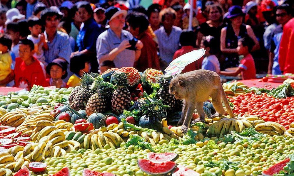 جشنواره میمون ها در تایلند