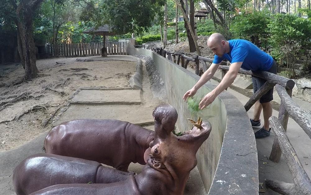 گشت و گذار در باغ وحش چیانگ مای