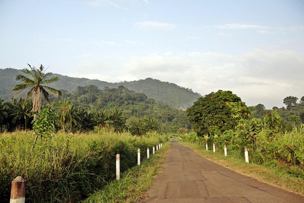 کشور توگو
