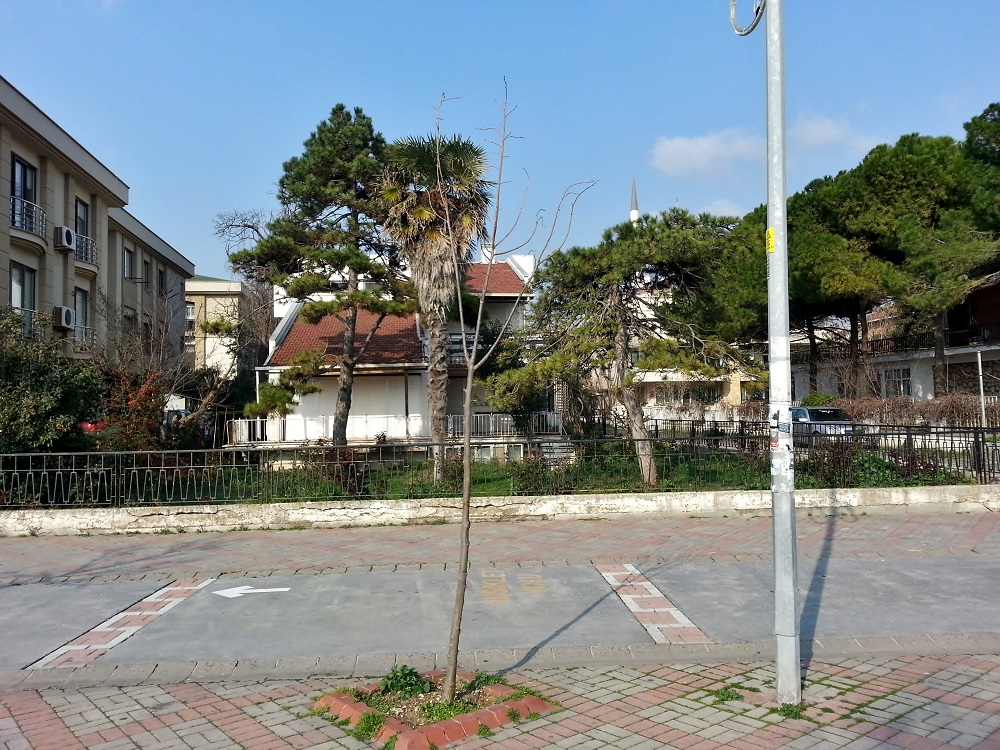محله بویوک چکمجه از نظر اقتصادی